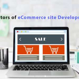 influence the cost of e-commerce site development