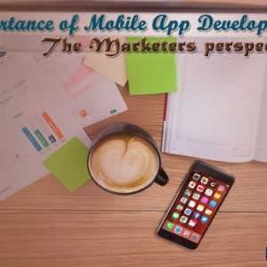 Mobile App Development from the Marketers Perspective