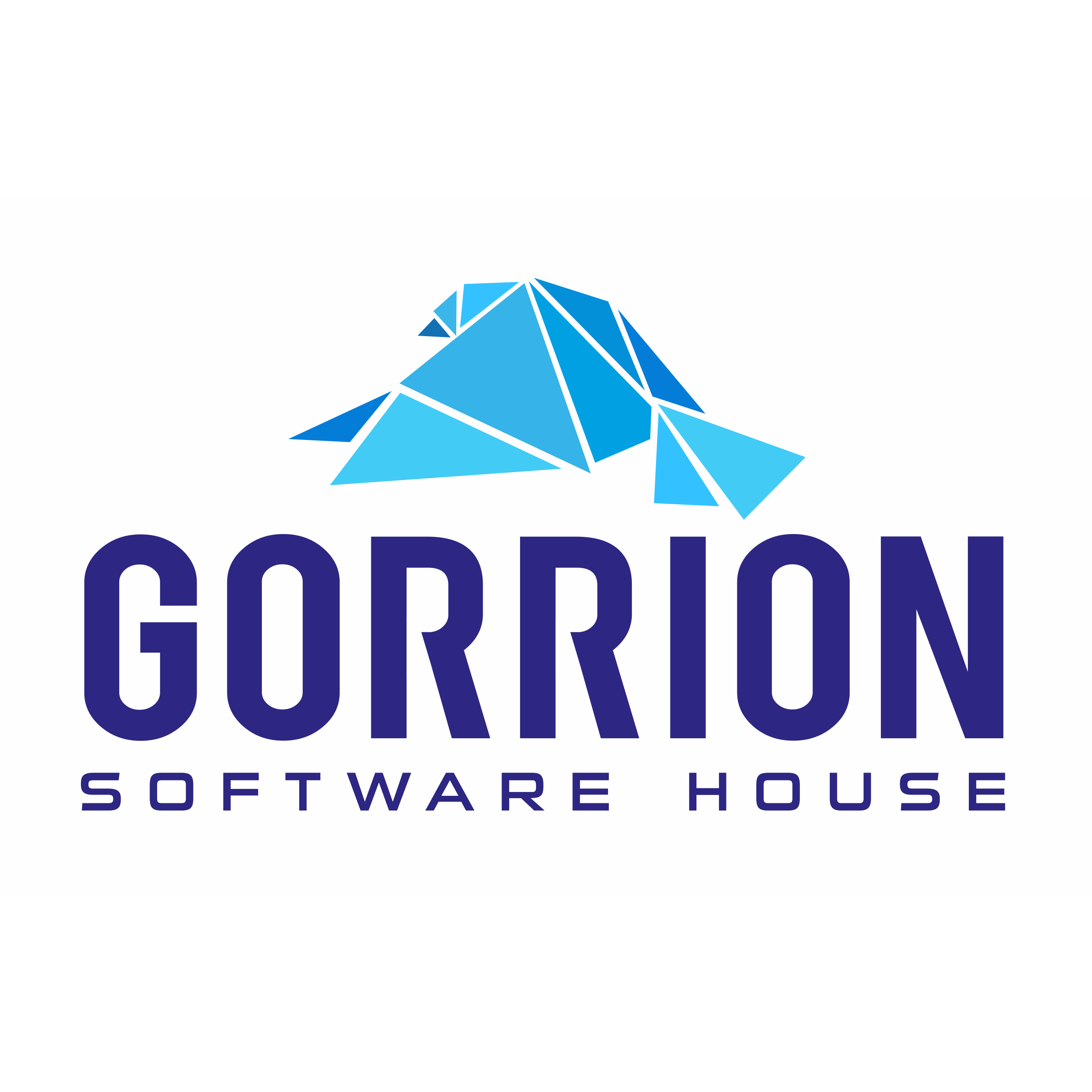 Gorrion Software House